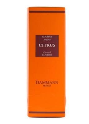 Dammann Fréres Sachets Rooibos Citrus, 24 x 2 g, 8203,cervcaj, krsac HB