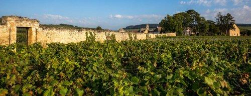 Top vína z Francúzska