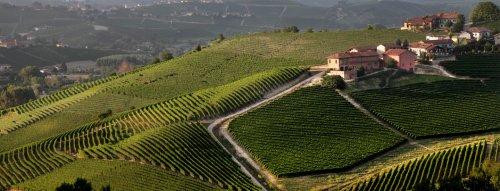 4.3. - ONLINE Degustácia s vinárstvom Antinori