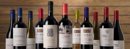 TOP vína z Čile