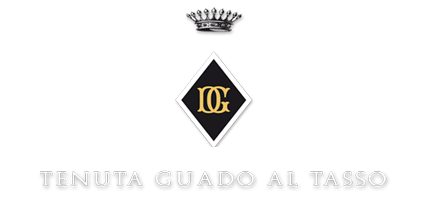 Guado al Tasso